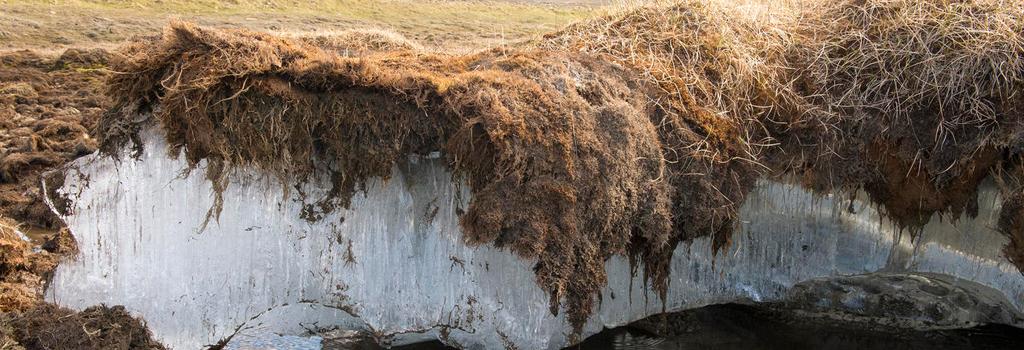 https://www.study24x7.com/article/867/permafrost